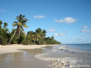 karaiby033